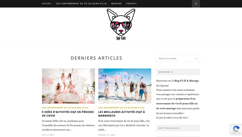 page d'accueil spy cats